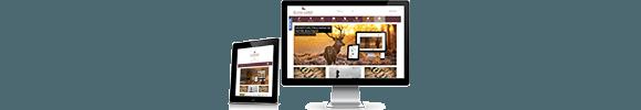 Création de site de vente en ligne
